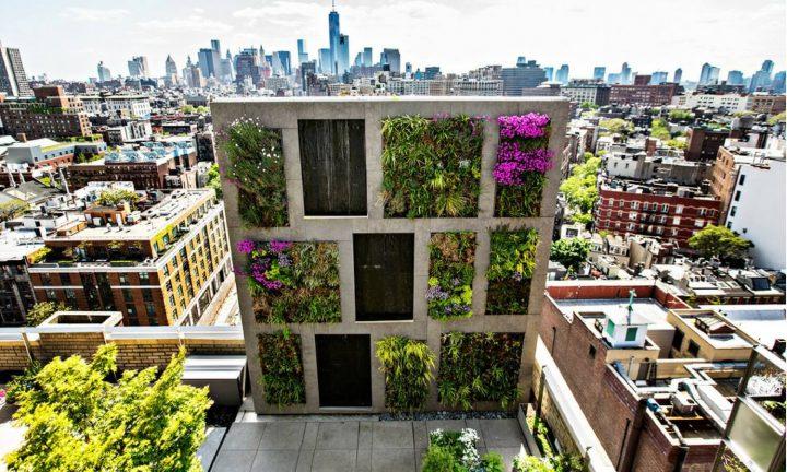 ini-nih-pupuk-yang-paling-cocok-buat-urban-farming
